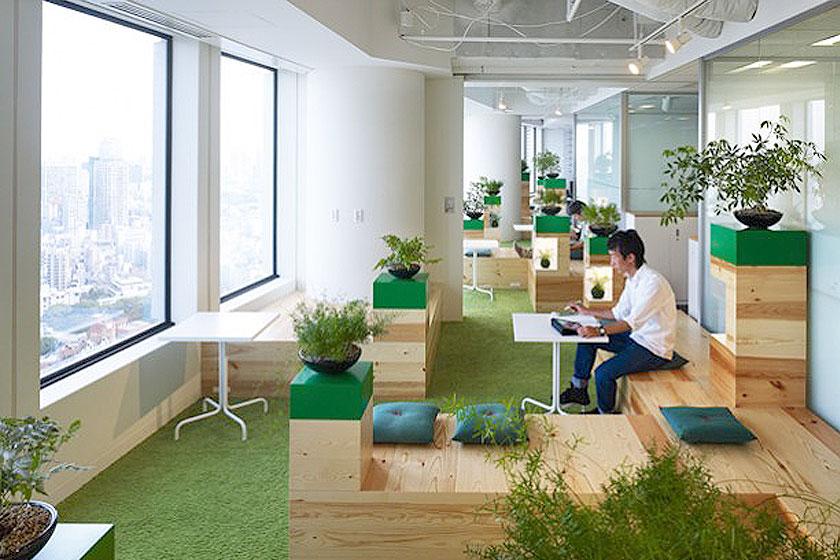 klein maar fijn de planten geven in combinatie met een groen tapijt en accentkleuren