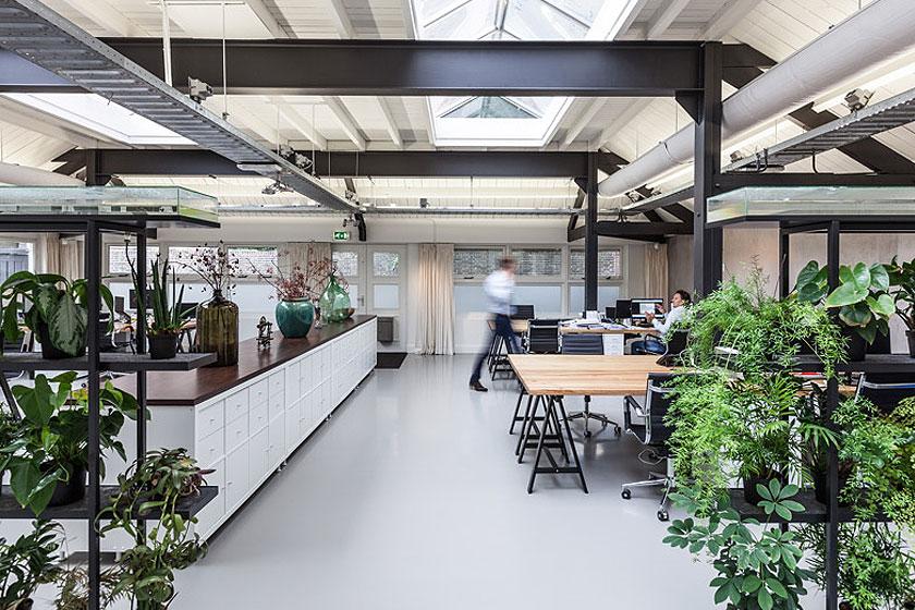 Architectenbureau Studio AA verbouwde een voormalig Amsterdams ketelhuis voor investeringsmaatschappij Nedvest - Pikaplant leverde zelfbewaterende plantenkaste