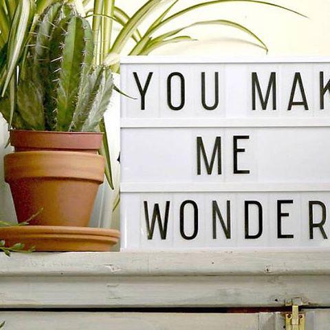 We kwamen 'm het afgelopen jaar al vaak tegen op Instagram en Facebook, de lichtbox met funky teksten! Hij past niet alleen perfect binnen de huidige interieur-trend van de wise words / 'tegeltjes-wijsheden' op zwart-wit posters en ansichtkaarten, het is vooral ook een leuke woon-accessoire. Behalve een bord met teksten is het ook een lamp. Dus verlicht je huis-, slaap- of kinderkamer met deze lightbox! Of verras je partner met een prikkelende boodschap!  Internationaal is het Zweedse interieurmerk Bxxlght ermee bekend geworden. In Nederland... Meer foto's en lees verder op: Stylingblog.nl (zie link in bio). #interior #product #design #interieur #styling #stylist #stylingblog #weblog #Dutch #Nederlands #inspiration #tips #Netherlands #Voorburg #freelance #inrichting #woon #accessoires #nieuws #news #ontwerp #webshop #Nederland #lightbox #lichtbak #hip #trendy #wise #words #accessoire