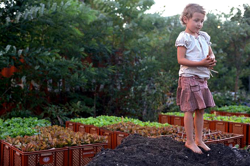 Must-visit: Prinzessinnengarten in Berlijn is een verplaatsbare biologische tuin met een koffietent, toiletten en een bar - Foto 3