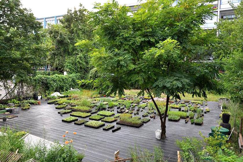 Must-visit: Prinzessinnengarten in Berlijn is een verplaatsbare biologische tuin met een koffietent, toiletten en een bar - Foto 6