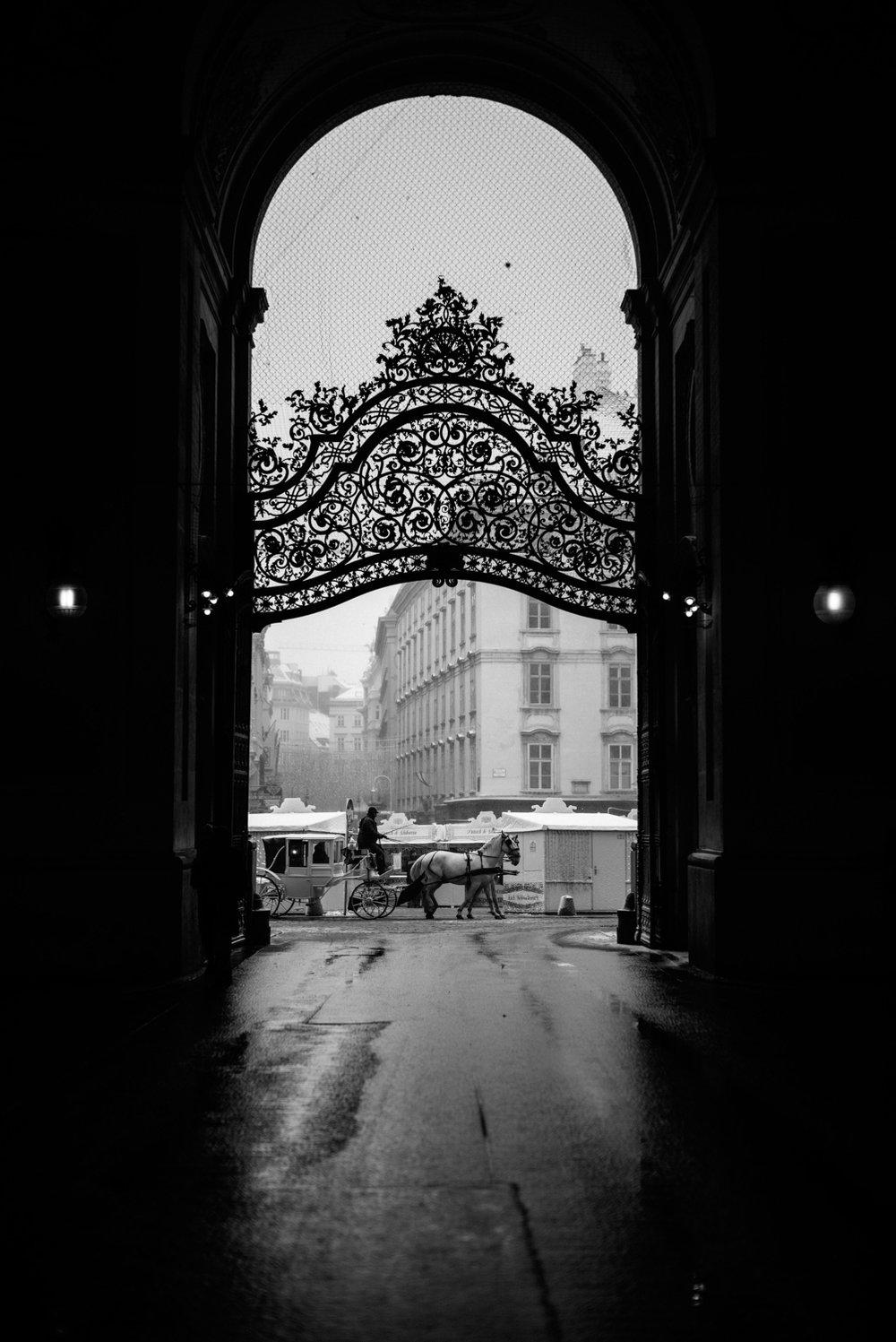 Leica-85.jpg
