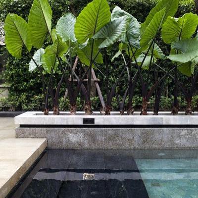 Garden ideas. Ogrodowe inspiracje.#interiors #interiordesign #interiordesignblog #interiordesigner#wnetrza #interior#garden#gardenideas#swimmingpool#poolideas Source: land8.com