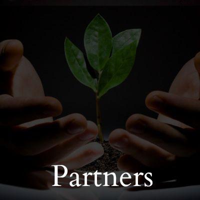 partners 400 tinted.jpg