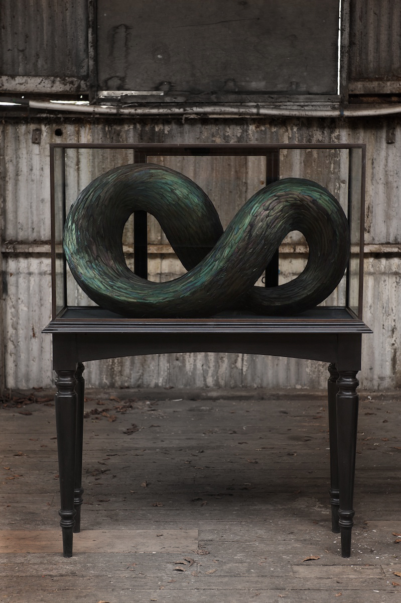Schema, 2013, Kate MccGwire