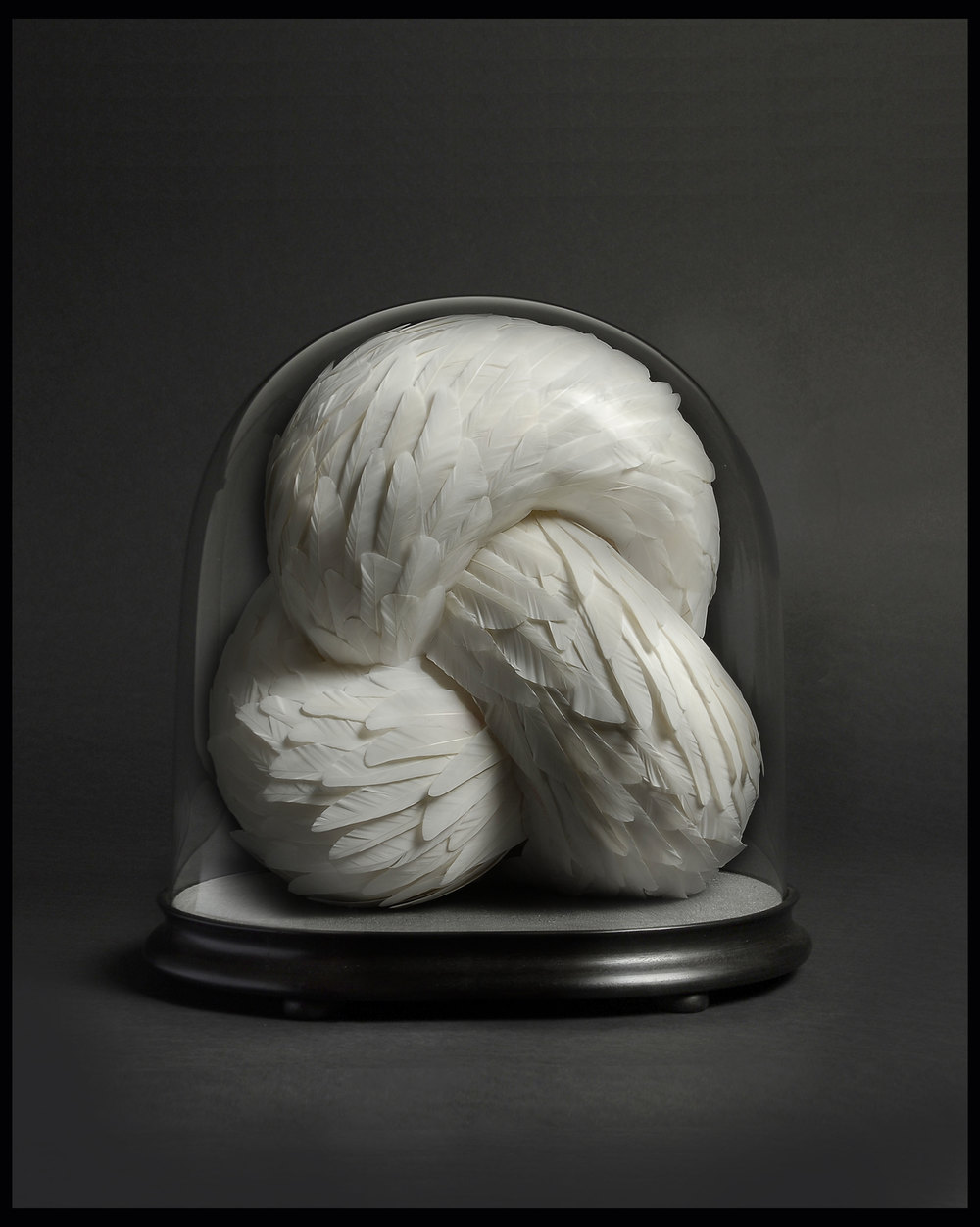 Crave, 2012, Kate MccGwire