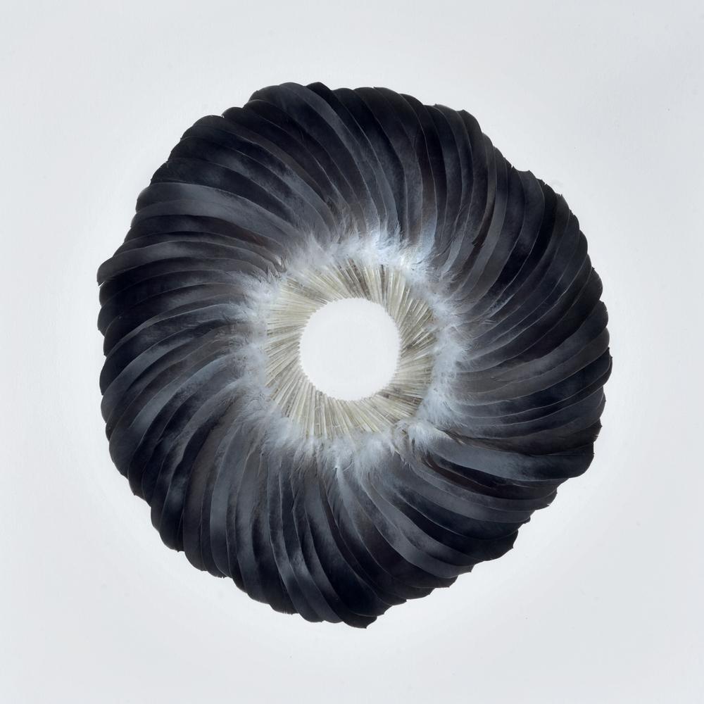 Sepal III, 2011, Kate MccGwire
