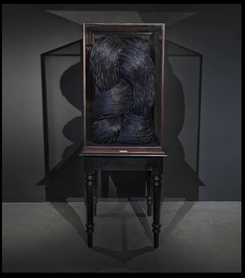 Seer, 2011, Kate MccGwire