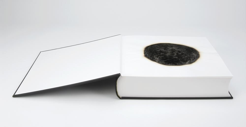 Fume, 2007, Kate MccGwire