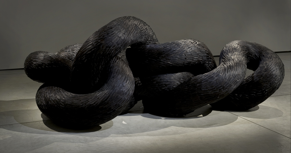 Corvid, 2011, Kate MccGwire - Photo: Tessa Angus