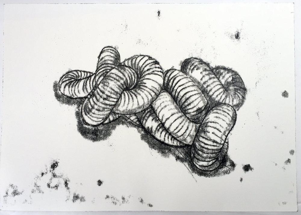 Corvidus I, 2011, Kate MccGwire