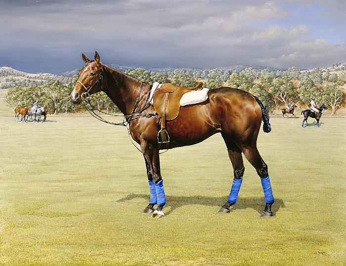 Favoured Pony