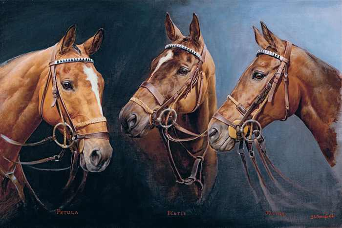 Kerry Packer's Polo Ponies