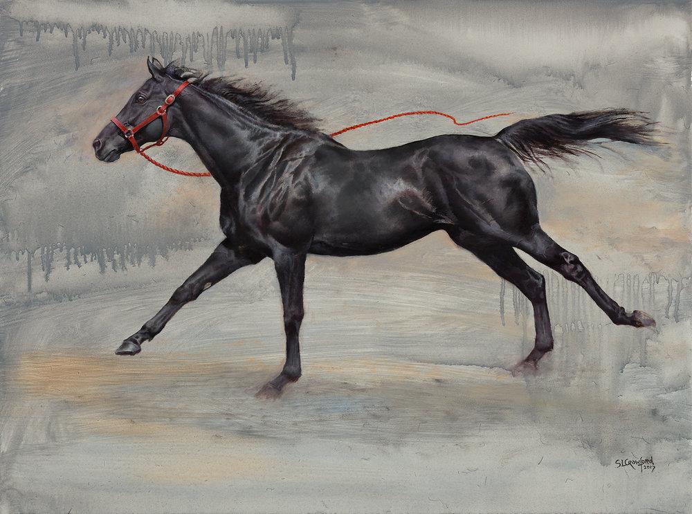 Equus Loose