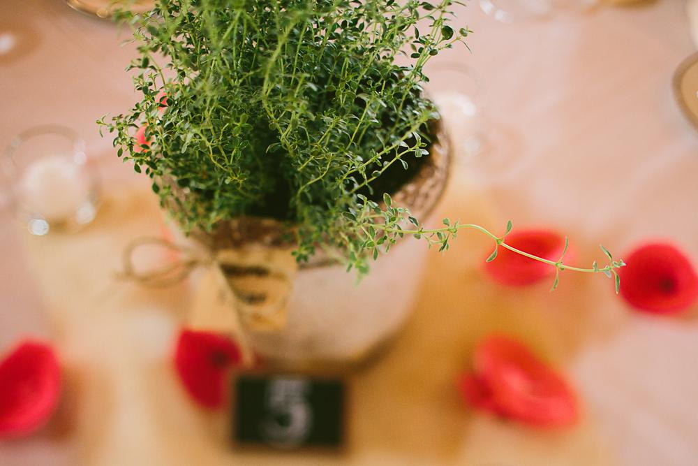 wedding teasers-15.jpg