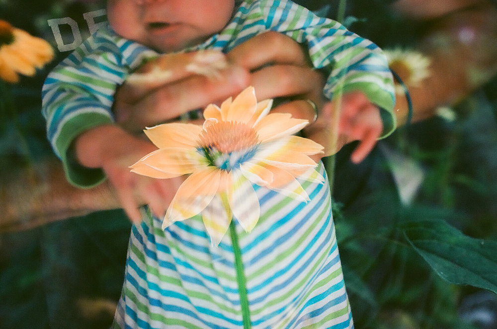 film newborn photographer-100.jpg