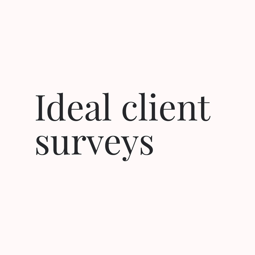 Ideal client surveys.jpg