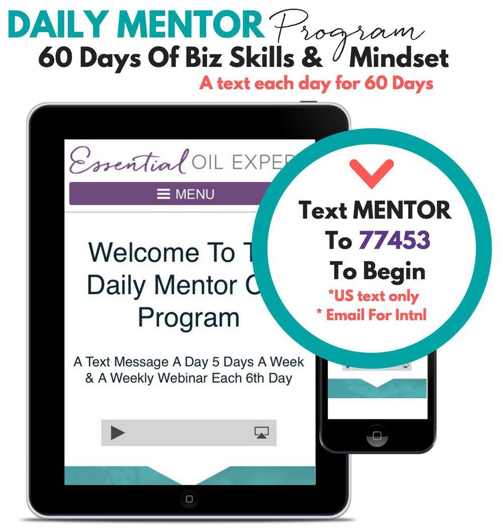 Daily mentor program Kirschbaum's.jpg