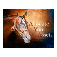 Allocate Your Assets