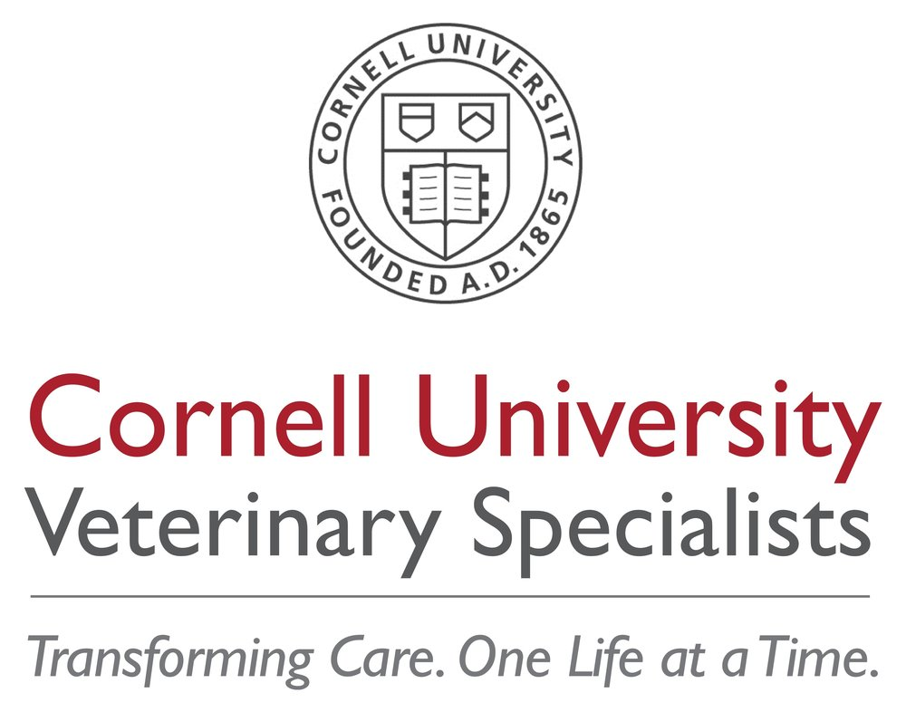 Boprey Photography Cornell University Veterinary Specialists