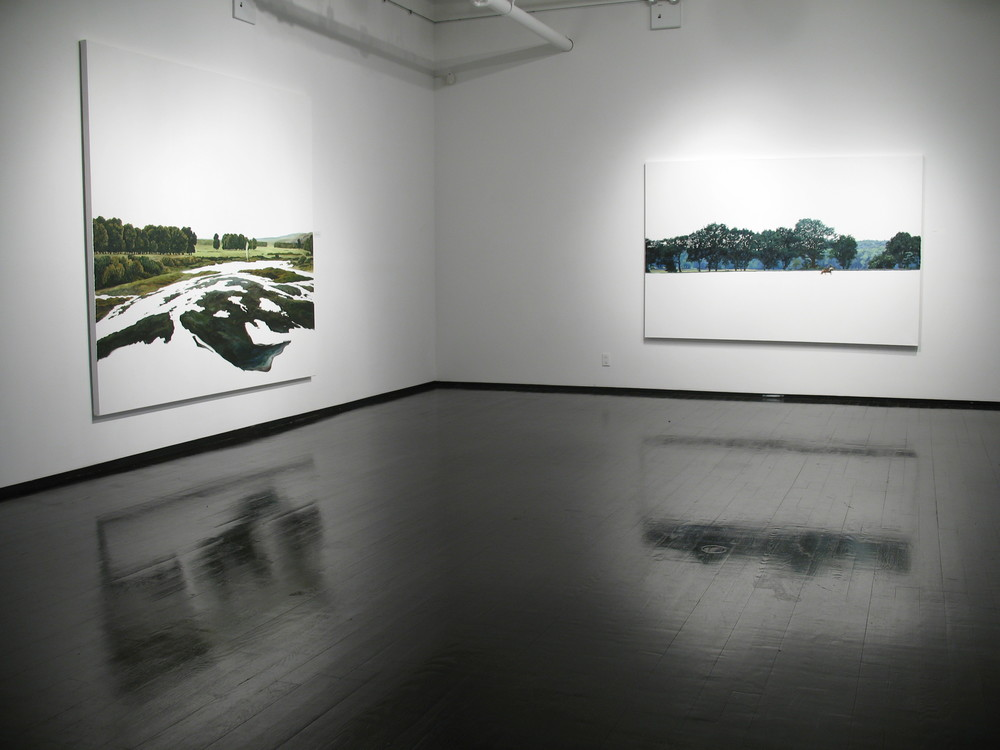 """Silke Schoener"" at Dillon Gallery, 2012"