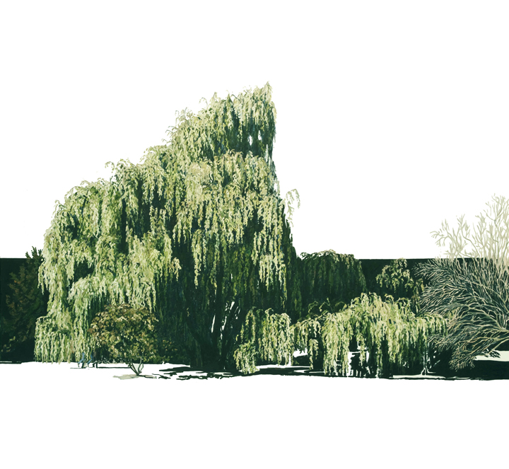 In the Willows, 2012