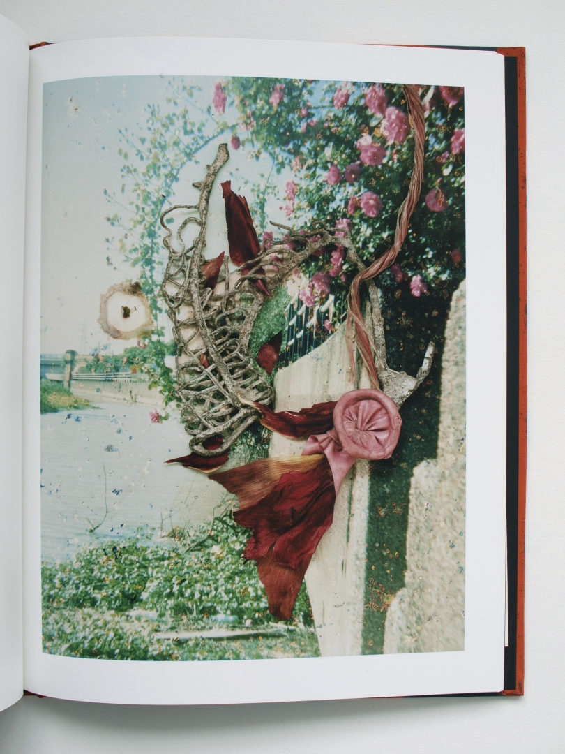 Stephen_Gill_Hackney_Flowers_Book_.jpg