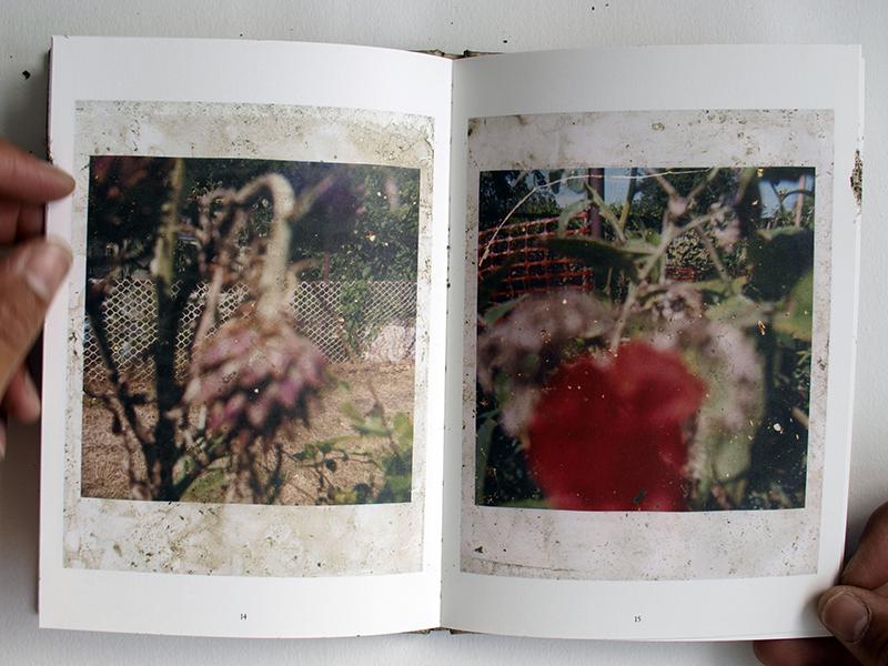 013-5.jpg