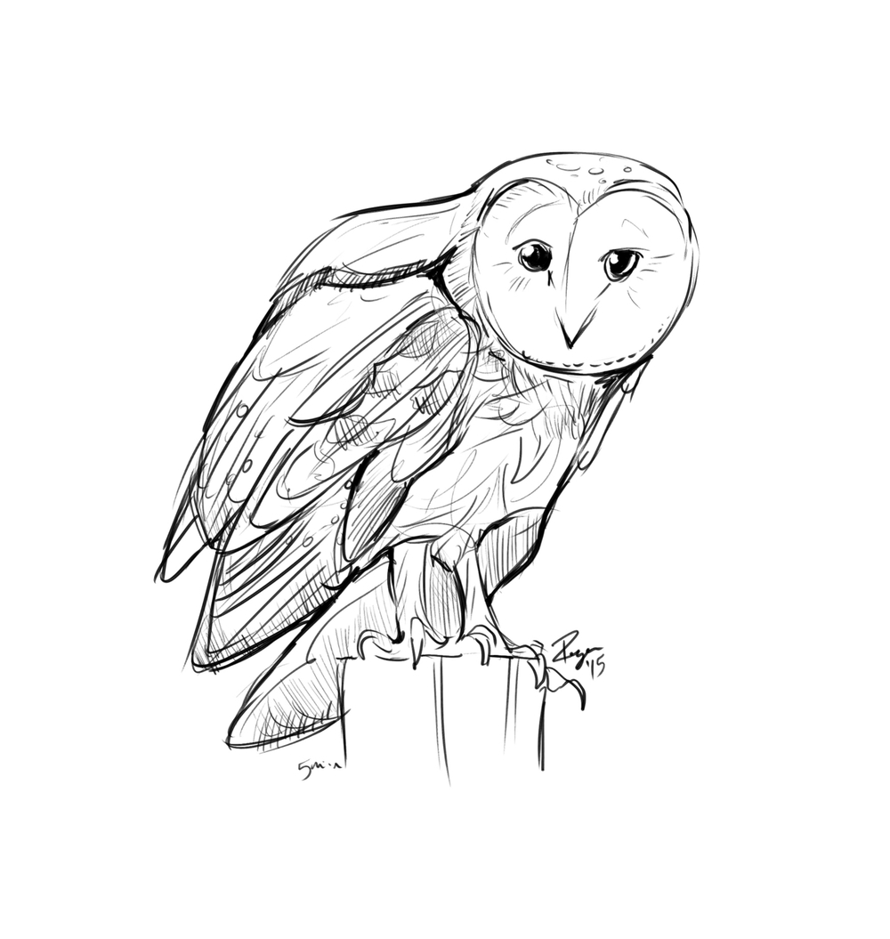 Just a little digital doodle of a barn owl.  I need to sketch every day, even if it's simple stuff like this.  This took about 5 minutes.