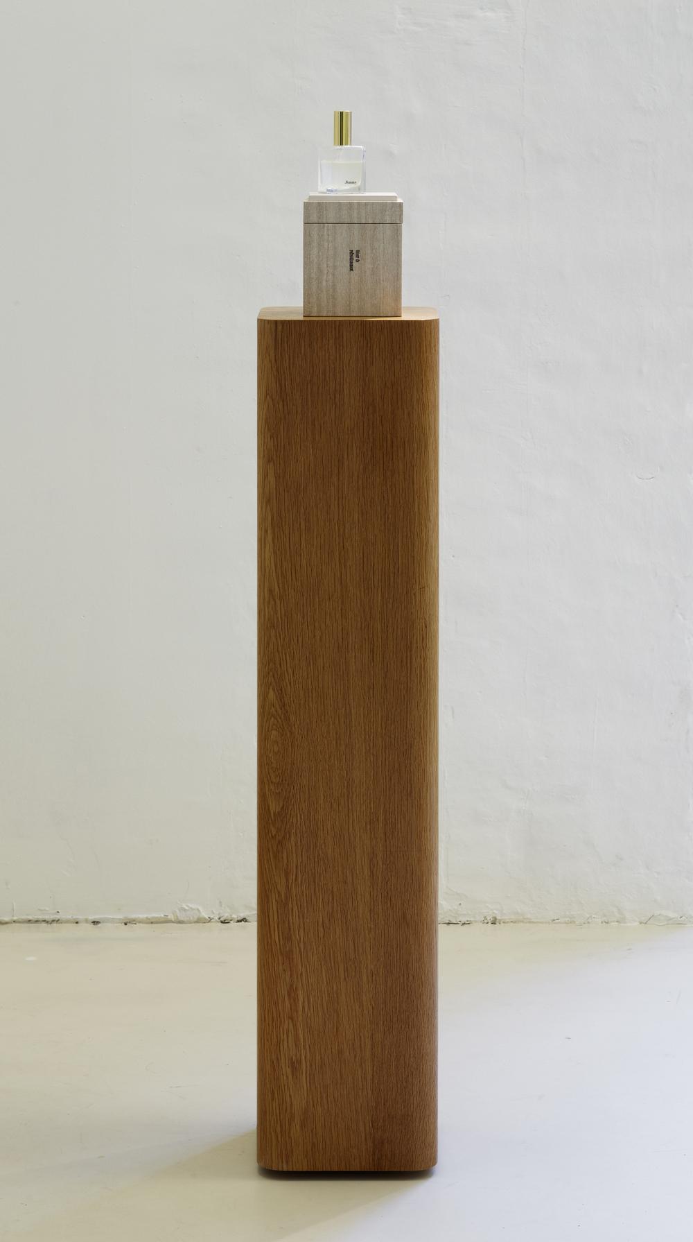 Troels Sandegård, Odeur de refroidissement, 2009, Hyperhidrosis (male perspiration), flacon, wood, veneer, leather, cardboard, 132 x 21,5 x 21,5 cm_2.jpg