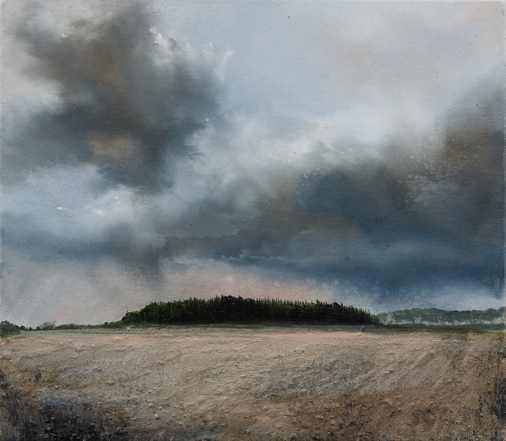 The wind sweeping in from the country Oil and mixed media on canvas 36x41cm