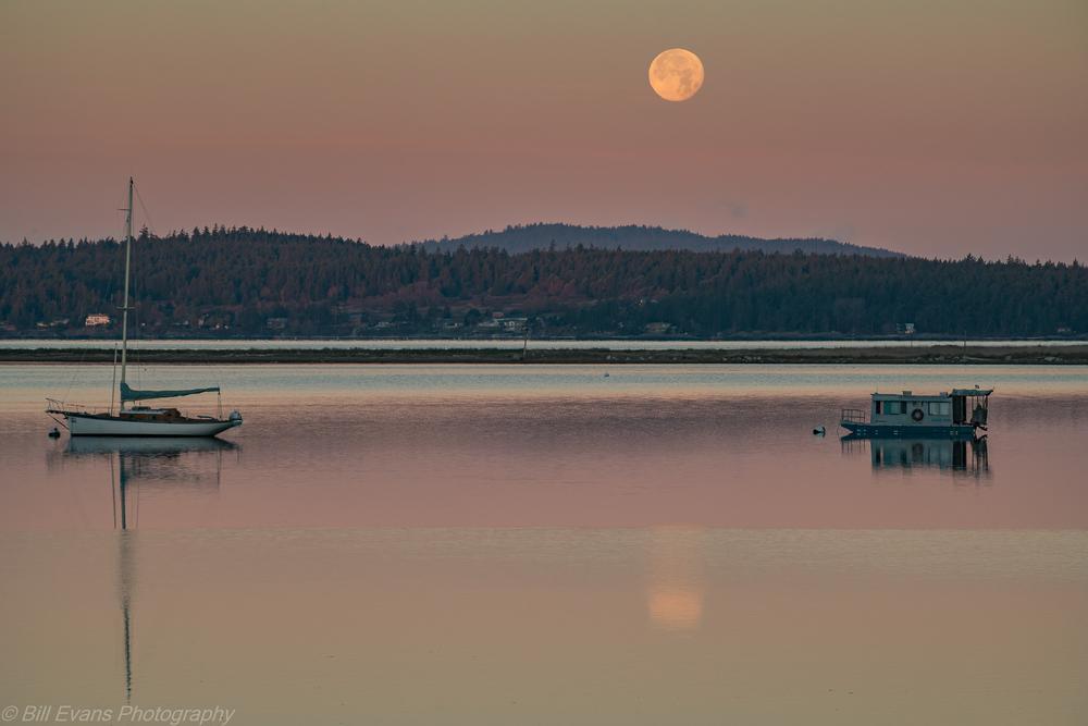 Full Moon over Fisherman Bay on Lopez Island (26 November 2015) Sony A7Rii 1/80 @ f/? iso 400
