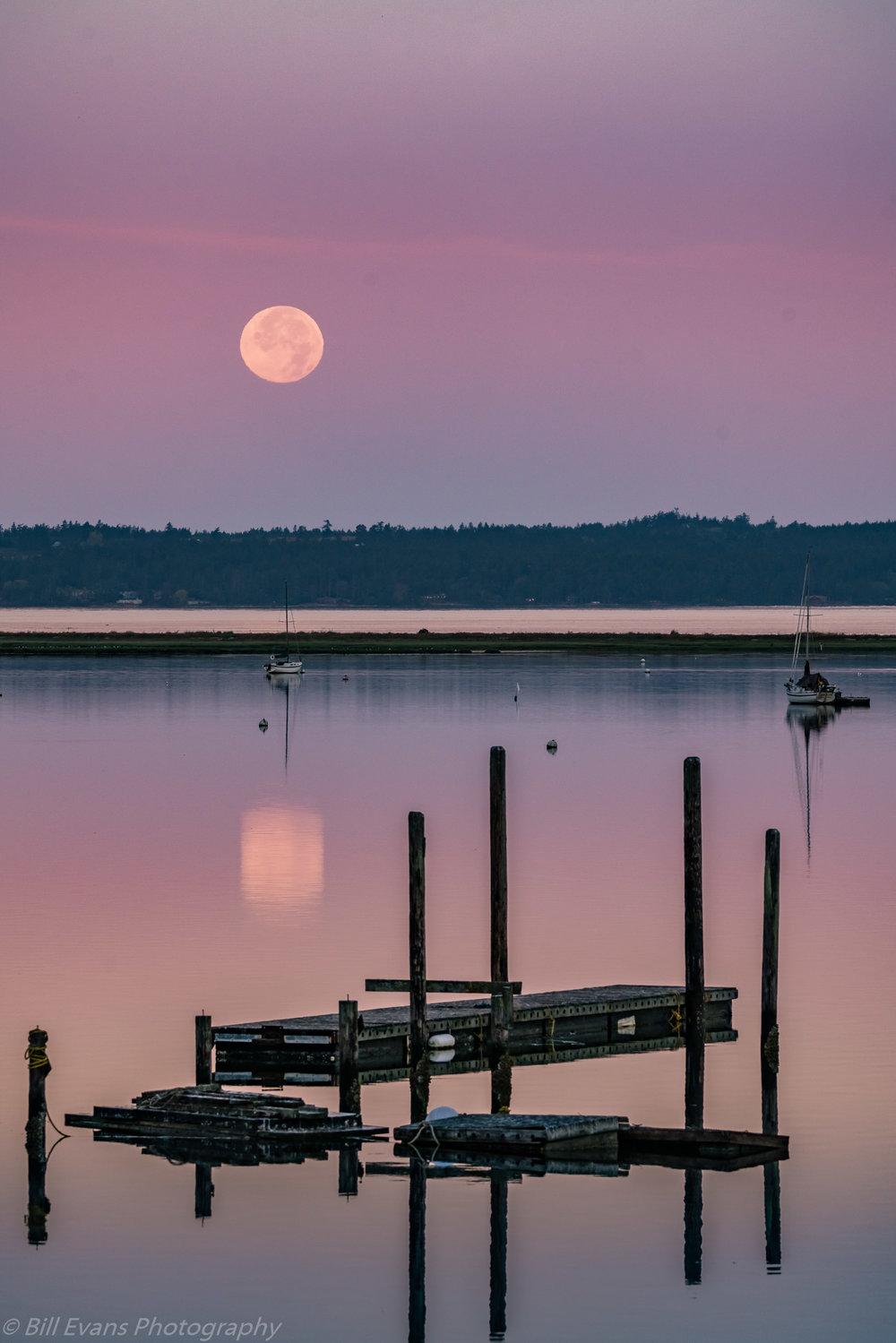 Image No. 2 - Full Moon Setting over Fisherman Bay (Lopez Island, Washington)   Sony A7Rii + Sigma 150-600mm (1/200s @ f/8 iso 800)
