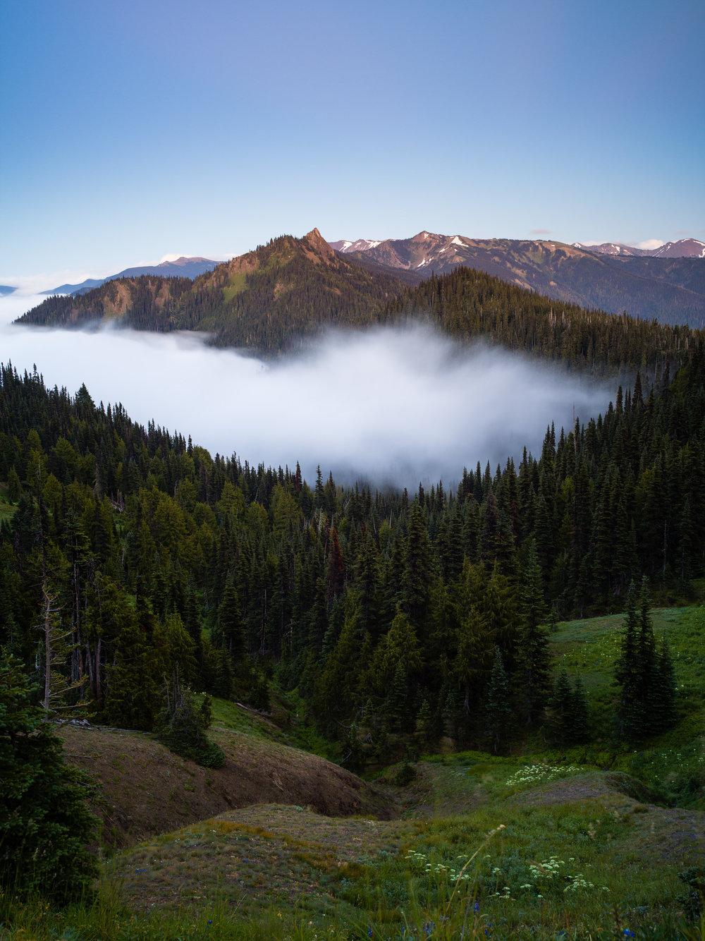 Hurricane Ridge Visitor Center -Olympic National Park, Washington