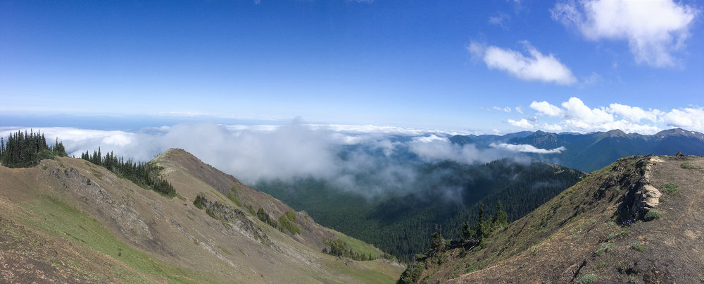 Blue Mountain - Olympic National Park, Washington