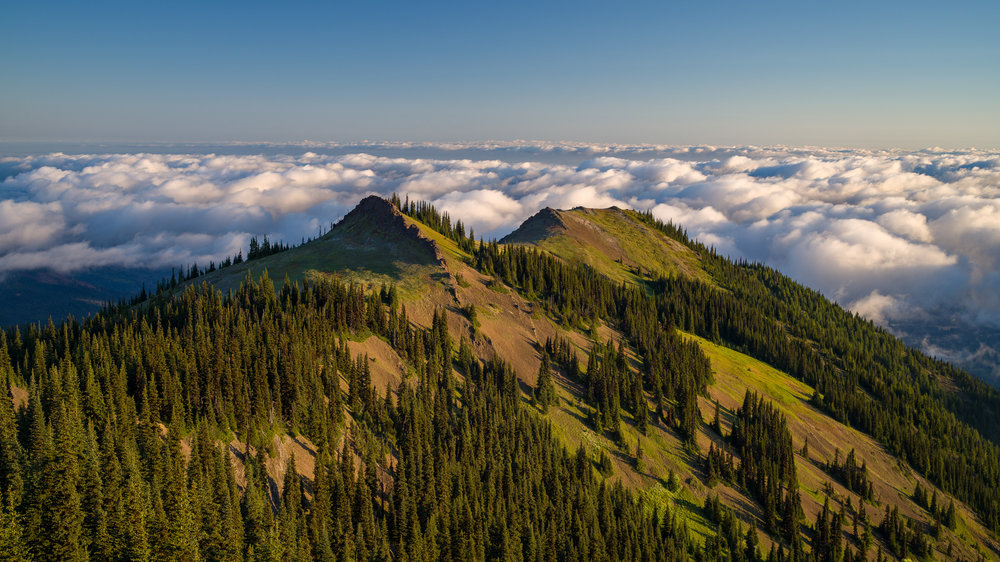 Blue Mountain -Olympic National Park, Washington