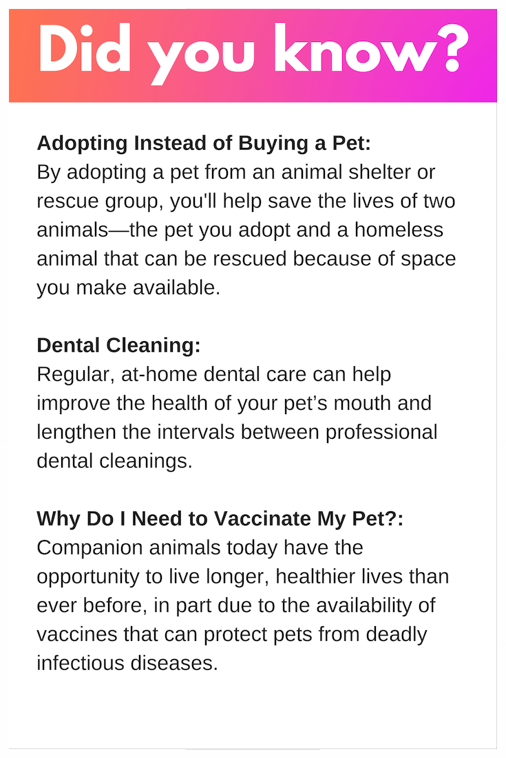 did you know about adoption, dental cleaning, why vaccinate pets.png