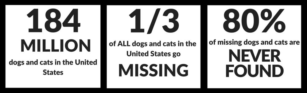Lost pet statistics US