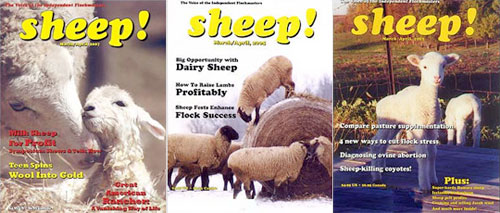 "My favorite publications I have come across: ""Sheep! Magazine"" and ""Spudman."" Mostly self-explanatory. (image via seriouseats.com)"