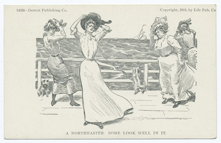 A nor'easter y'all! (image via NYPL)
