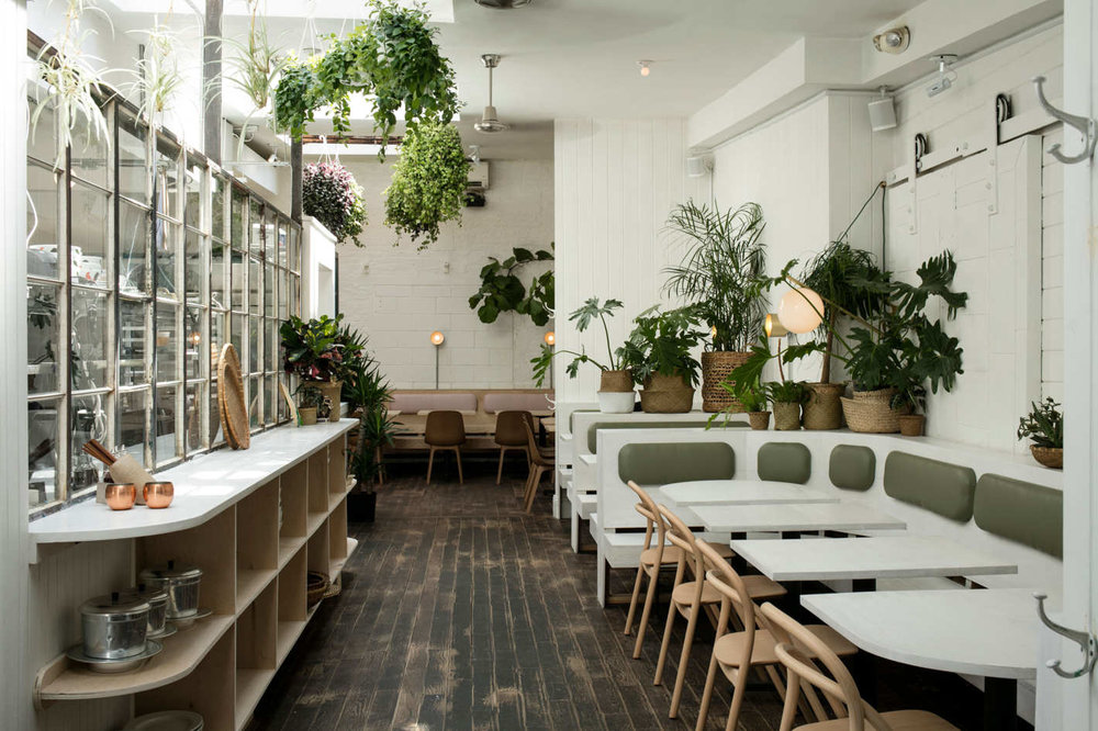 """The plant-strewn bar and dining room were designed by the Red Hook–based Ladies & Gentlemen Studios."" (Photo by Melissa Horn via grubstreet)"