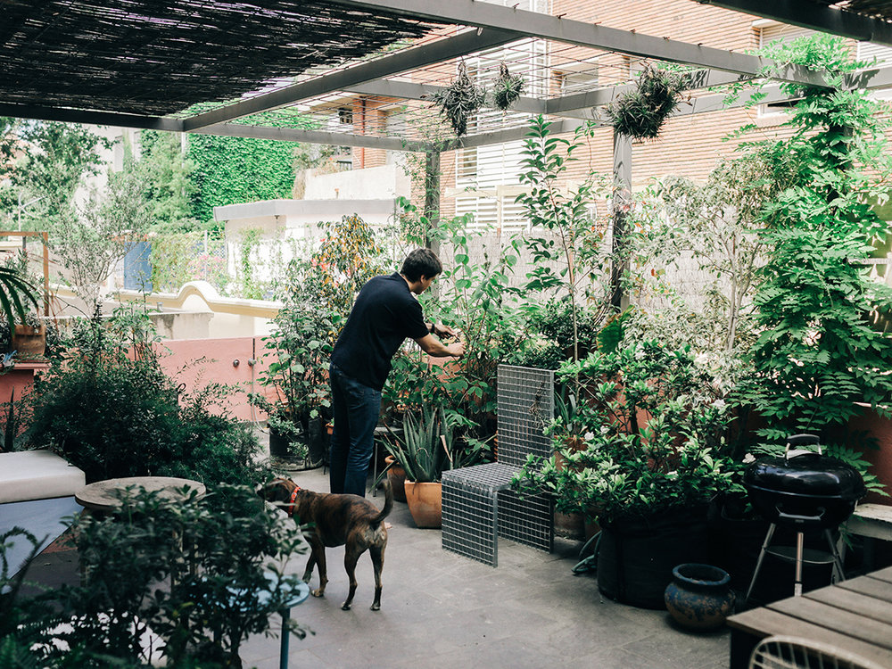 I WANT A GARDEN! (photo by  IRIS HUMM  via sightunseen )