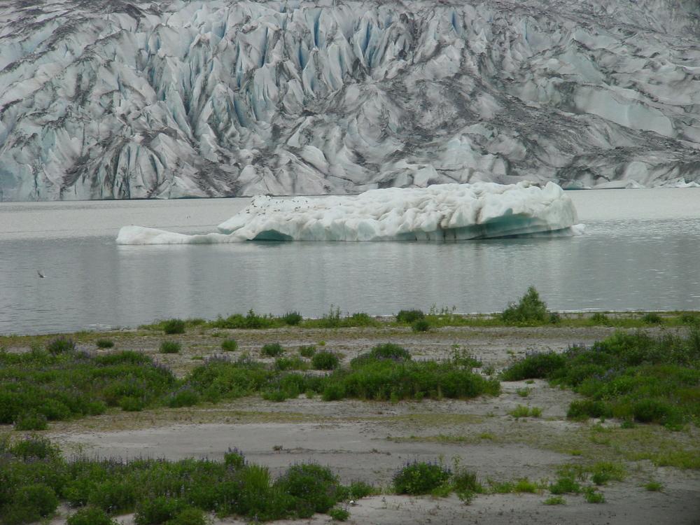 A75-Alaska_010.jpg