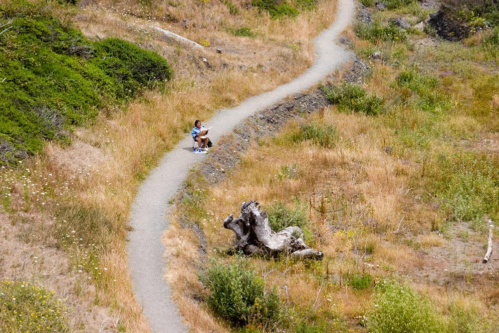 A80_Pacific_Coast_2006-Humbug_Mountain_C20_4027-050.jpg