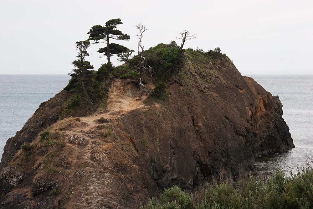 A80_Pacific_Coast_2006-Humbug_Mountain_C20_4032-052.jpg