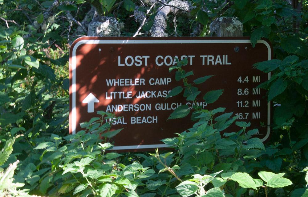 A80_Pacific_Coast_2006-Lost_Coast_C20_3420-066.jpg