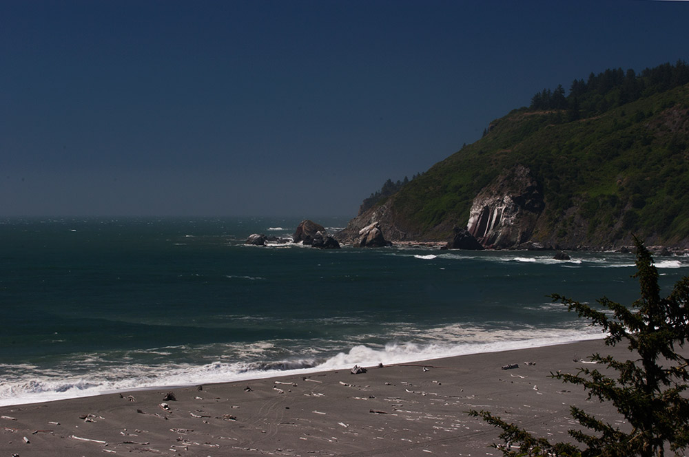 A80_Pacific_Coast_2006-Lost_Coast_C20_3576-096.jpg