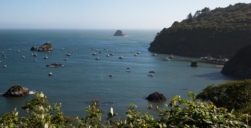 A80_Pacific_Coast_2006-Lost_Coast_Panorama_C20_3588-103.jpg