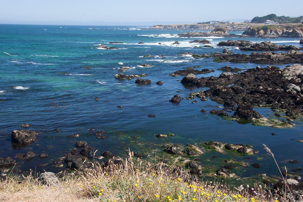 A80_Pacific_Coast_2006-Mendocino_C20_3301-108.jpg