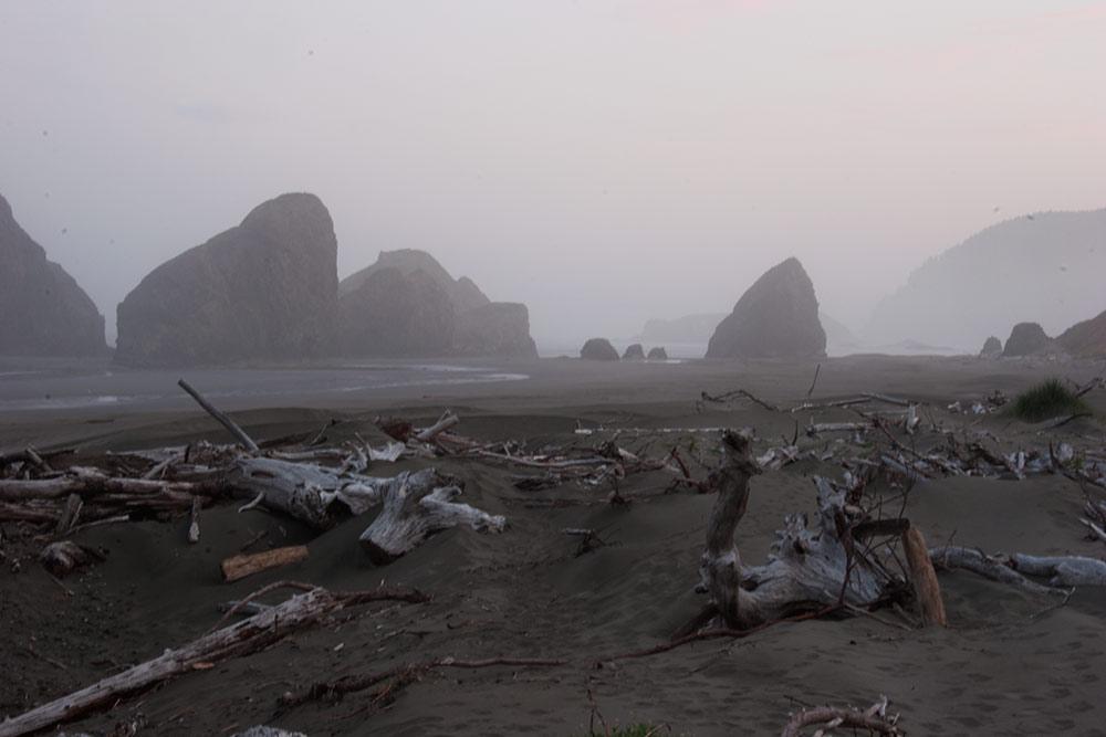 A80_Pacific_Coast_2006-Pistol_River_C20_3936-140.jpg